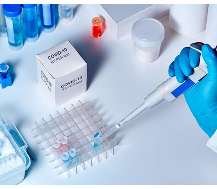 80% иммунитета в связи с COVID-19 пропадает за 7 месяцев