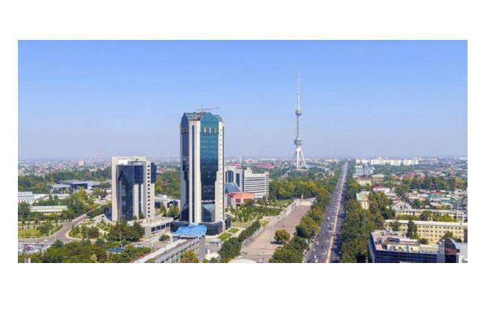 Специальные полосы для передвижения транспортных средств в Ташкенте