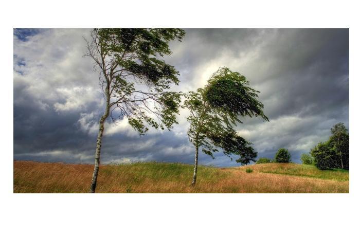 Завтра в Баку и на Абшероне ожидается сильный ветер