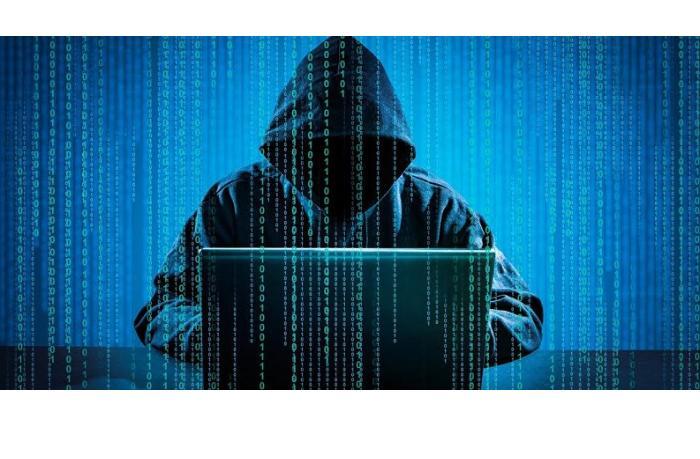 В Грузии хотят ужесточить наказание за киберпреступления