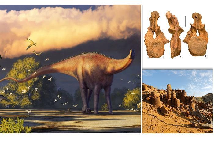 Новое открытие - неизвестный гигантский динозавр в Средней Азии