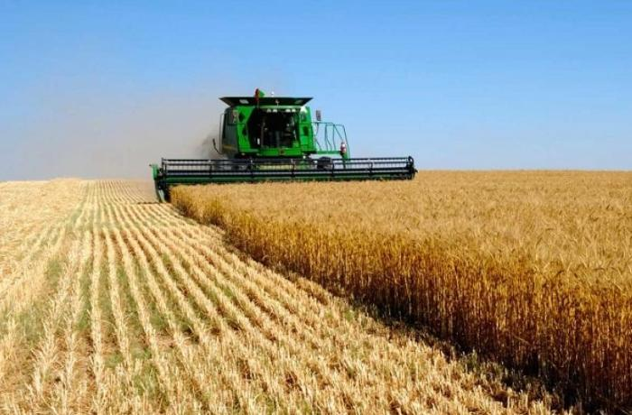 В Казахстане примут меры по увеличению экспорта продукции агропромышленного комплекса в два раза