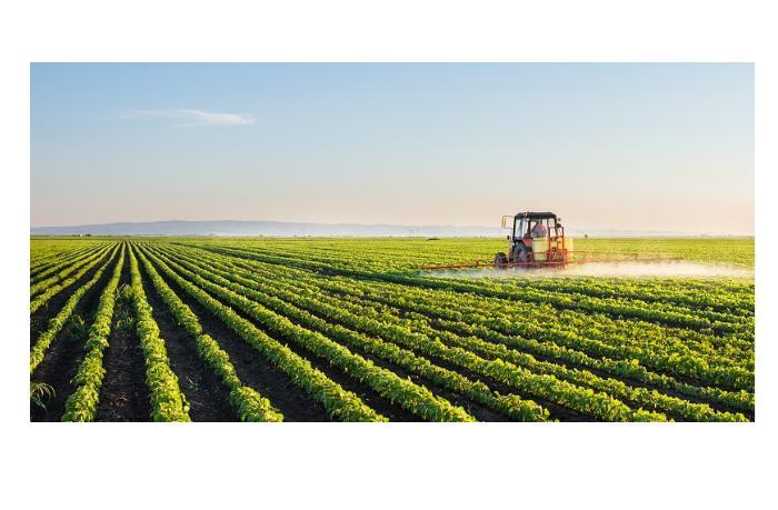 Кредитование сельского хозяйства в Азербайджане незначительно возросло