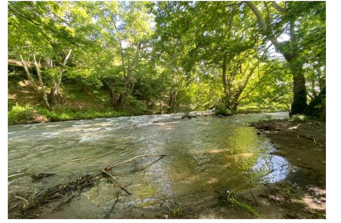 В Карабахе будет создан новый национальный парк