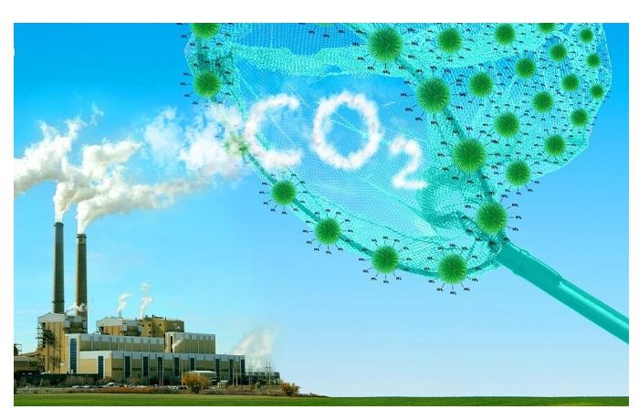 Германия стремится достичь нулевых выбросов на 5 лет раньше