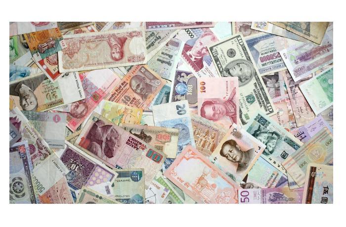 Тюркскому миру пора подумать об общей валюте - Александр Разуваев