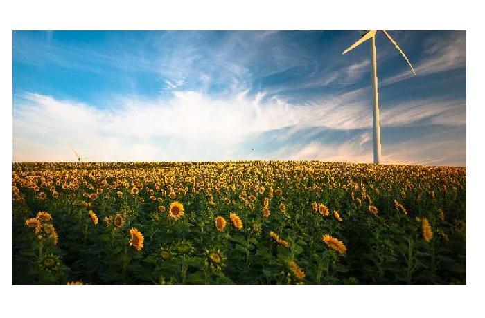 100 млрд евро не сделали экологичнее сельское хозяйство Европы - Счетная палата ЕС