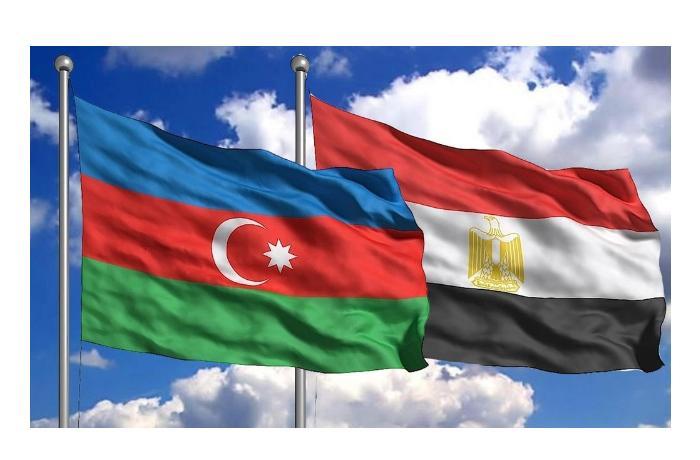 Развитие двусторонних отношений обсудили Азербайджан и Египет