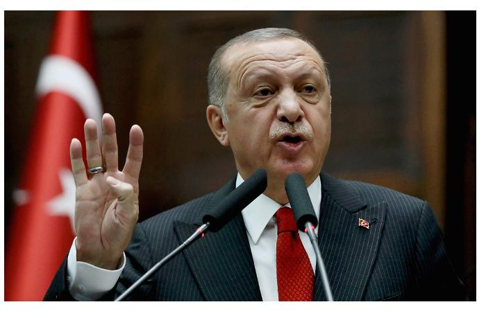 Объем прямых инвестиций в Турцию за 18 лет достиг $225 млрд - Эрдоган