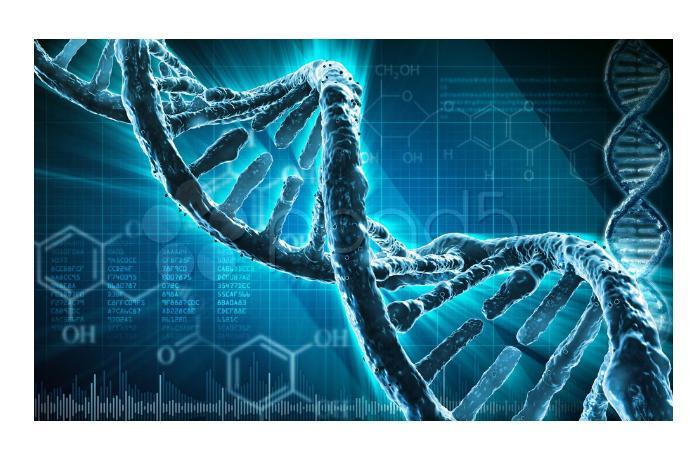 В РФ создадут генетические профили пациентов